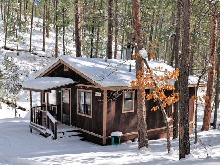 Pair Tree Rental Cabin